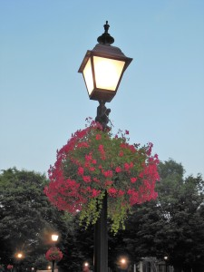 Proceeds from Victorian Christmas are used to preserve and beautify Historic Williamsport and Millionaires Row. The organization is able to buy, hang and water these flower baskets, hung by Lady Di's Floral & Garden Art.