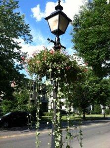 Lamp post planter